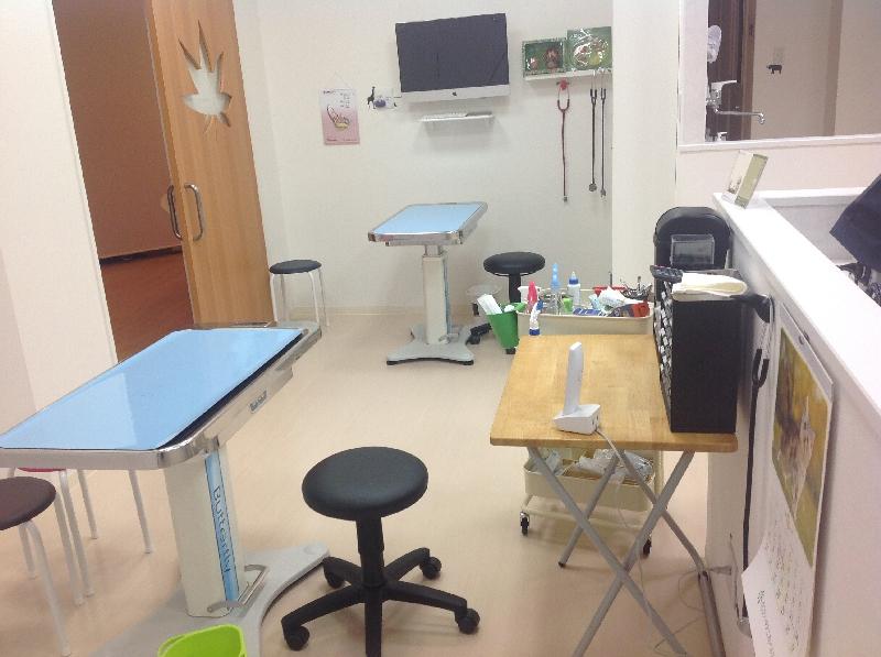 もみじ動物病院photo